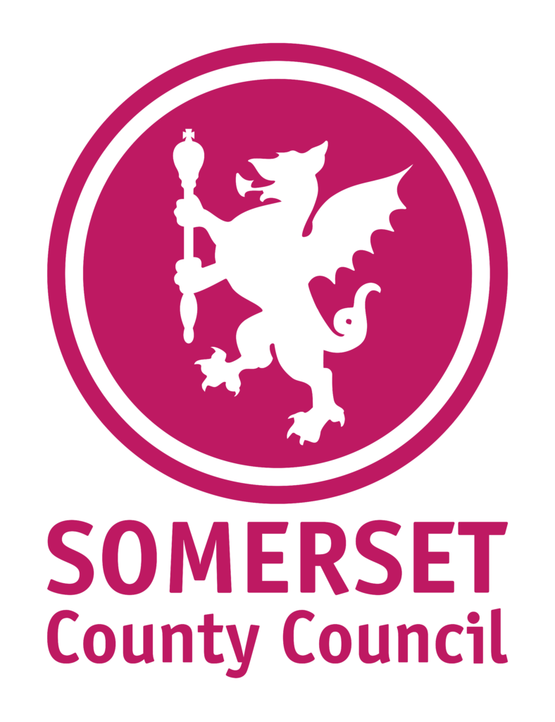 nhs and social care in somerset